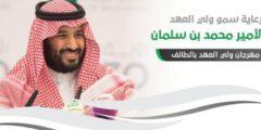 انطلاق مهرجان ولي العهد للهجن في ميدان محافظة الطائف