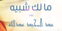 كلمات أغنية مالك شبيه عبد المجيد عبدالله مكتوبة