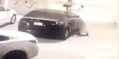بالفيديو.. شاب يحرق سيارة امرأة بالطائف لهذا السبب