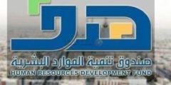 رابط تسجيل السعوديين ذوي الأجور من 3200 ريال بمبادرة دعم التوظيف عبر منصة هدف