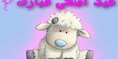 أجمل رسائل Sms والواتساب لـ تهنئة عيد الأضحى المبارك 2020–1441 وأجمل صور خروف عيد الأضحى
