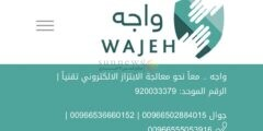 ضحايا احتيال شركة واجه.. قصة منصة خدعت واستغلت ضحايا الابتزاز